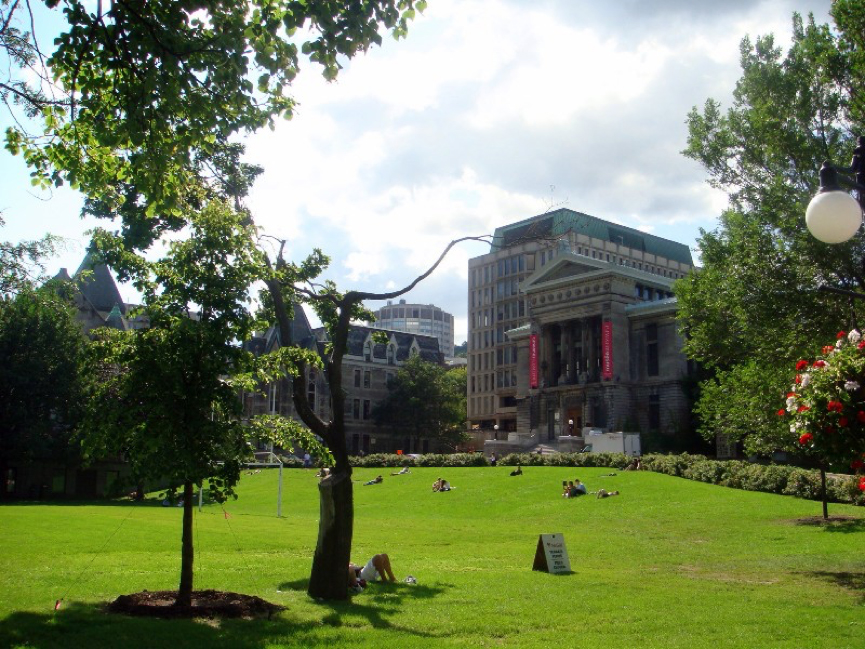 thesis mcgill library Department of education 4 your mcgill library theses and dissertations search will philosophy term paper topics cover mcgill's entire collection of cokely, carrie lynn.
